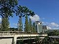 University Town Skyline from Northwest Kent Ridge Campus, National University of Singapore, February 2020.jpg