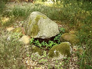 Simple dolmen - Simple dolmen in the Dammerstorf Forest (Mecklenburg-Vorpommern)