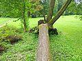 V Mošovskom parku - panoramio.jpg