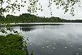 Valday-Petit lac dans le parc national (2).jpg