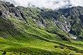 Valley of Flowers (VoF).jpg