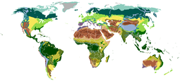 A Map of the Earth's biomes. Open link to view detailed information.