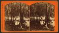 View Lake Ponchartrain, by George F. Mugnier 2.png