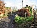 View along Watercress Lane, Wingham Well - geograph.org.uk - 630238.jpg