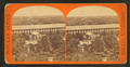 View from arsenal tower looking north, Mts. Tom and Holyoke Ranges in the distance, by E. & H.T. Anthony (Firm).png