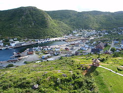 View from the northside hills of Petty Harbour -b.jpg