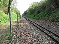 View southeast along the Bure Valley Railway - geograph.org.uk - 1244718.jpg