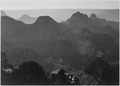 "View with shrub detail in foreground, ""Grand Canyon National Park,"" Arizona., 1933 - 1942 - NARA - 519880.tif"