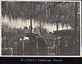Viewing the Wisteria on Taiko Bridges in Kameido Tenjin Shrine, Kameido, Tokyo (藤見物, 亀戸天神社 太鼓橋, 東京都江東区亀戸) (1914-09 by Elstner Hilton).jpg