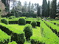 Villa schifanoia, giardino, terza terrazza 04.JPG