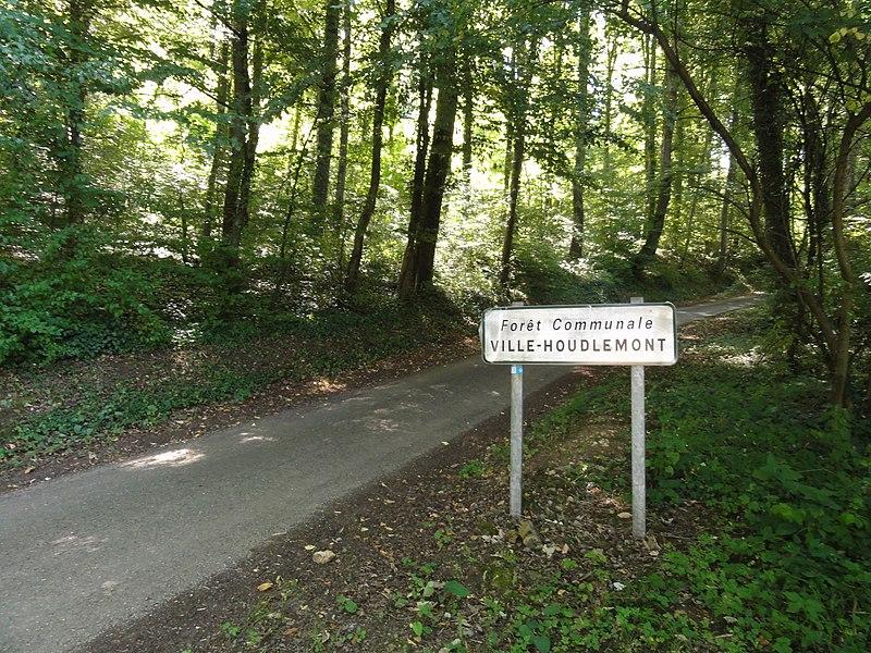 Ville-Houdlémont (Meurthe-et-M.) forêt communale