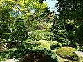 Vue du Jardin Albert Kahn 1.JPG