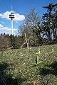 WLE-Baden Württemberg-Zollernalbkreis-9383.jpg