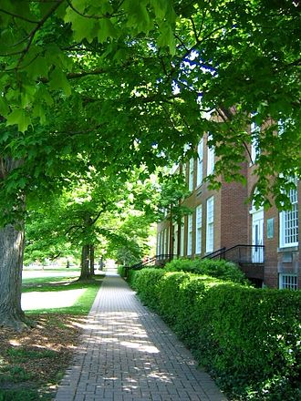 Walkability - A brick paved sidewalk in Hudson, Ohio.