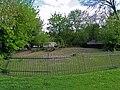 Warszawa zoo wybieg wigonia (wikunii).JPG