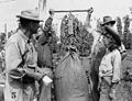 Weighing Hops (6427139253).jpg