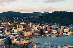 Wellington Harbour and city viewed from Mount Victoria at dawn