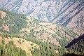 Wenaha-Tucannon Wilderness, Umatilla National Forest (36341405405).jpg