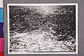 Werner Haberkorn - Vista aérea do Estádio Paulo Machado de Carvalho (Pacaembu). São Paulo-Sp., Acervo do Museu Paulista da USP.jpg