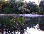 Whitnall park pond - milwaukee.jpg
