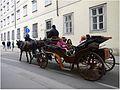 Wiedeń - przejażdżka dorożką - panoramio.jpg