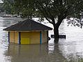 Wien - Hochwasser Juni 2013 - Insel-Café.jpg