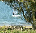 Wind surfer on Rutland Water - geograph.org.uk - 1005092.jpg