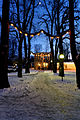 Winter im Kurpark Bad Mergentheim. 03.jpg
