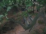 Witten Bunker Steinberg.jpg