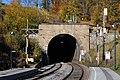 Wolfsbergtunnel 2017.jpg