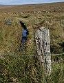 Wooden post above Devonport Leat - geograph.org.uk - 1501223.jpg