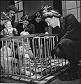 Wrens Learn Mothercraft- Members of the Women's Royal Naval Service Receive Training From the Mothercraft Training Society, London, England, UK, 1945 D23649.jpg