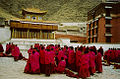 Xiahe monks2.jpg