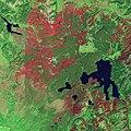Yellowstone - August 2, 1989.jpg