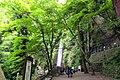 Yorokoen, Yoro, Yoro District, Gifu Prefecture 503-1254, Japan - panoramio (4).jpg