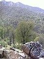 Zarju - Eshghkooh near balacheli 4 - panoramio.jpg