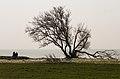 Zicht op het IJsselmeer. Locatie Mirnser Klif 02.jpg