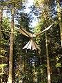 """Forest dreaming, motherhood revisited"" - geograph.org.uk - 239565.jpg"