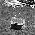 """Kranjiček"" (panj), Rob 1950.jpg"