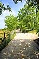 Η είσοδος από την Ι.Μ. Κουτλουμουσίου Αγίου Όρους. - panoramio (1).jpg