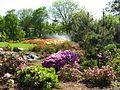 Ботанічний сад ім. М.Гришка IMG 9048.jpg