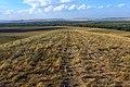Вид с вершины горы Точильной в северном направлении - panoramio.jpg