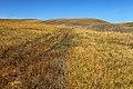 Горы Долгие. Вид в северном направлении - panoramio.jpg
