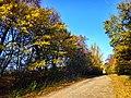 Дорога зі с. Буйволівці, фото 1.jpg