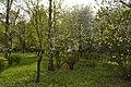Київ, Подільський район, Березовий гай, 80-385-5018.jpg