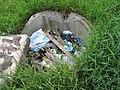 Невская Дубровка. Замусоренный колодец рядом с домом по ул. Томилина 3 - panoramio.jpg