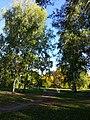 Парк во Львовке.jpg