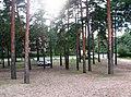 Пос. Разлив. Советский проспект. Вид с пляжа. - panoramio.jpg