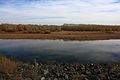 Река Урал в октябре - panoramio.jpg
