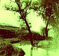 Річка Стеха, Ковалівка, 1959.jpg